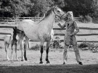 Terry O'Neill Rod Stewart - Ashcroft Art